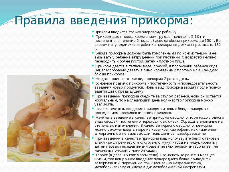 Как вводить прикорм ребенку в 6 месяцев: при грудном вскармливании, пошаговое описание