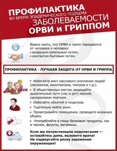 Профилактика гриппа (орви) у детей и взрослых препараты средства меры