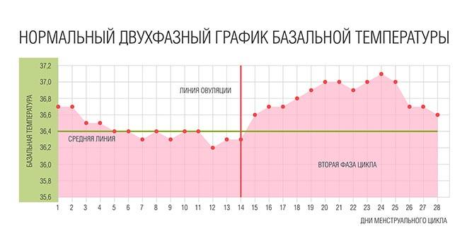 Температура - признак беременности до задержки: какой она должна быть на ранних сроках после зачатия, может ли она подняться до 37