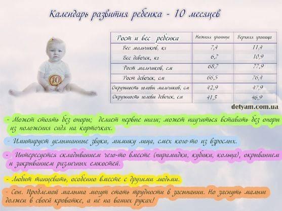 Ребенку 2 года 10 месяцев – как развивается малыш и что умеет?