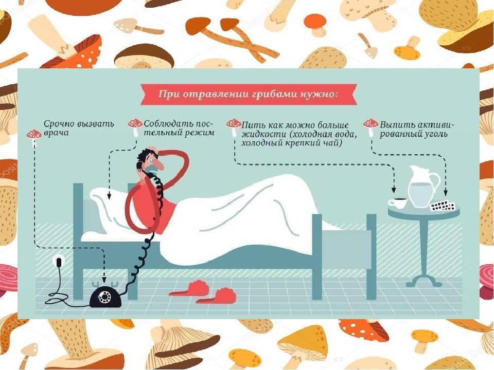 Что делать при отравлении грибами в домашних условиях отравление.ру что делать при отравлении грибами в домашних условиях