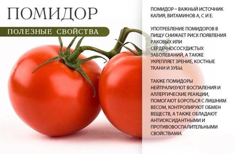 Можно ли кормящей маме помидоры свежие - всё о грудничках