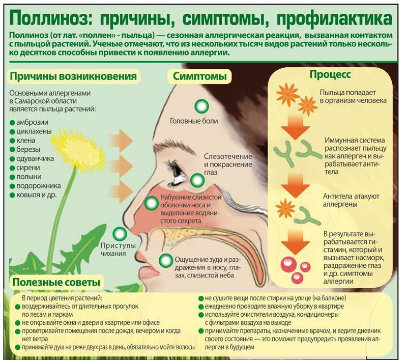 Причины возникновения и профилактика поллиноза у детей
