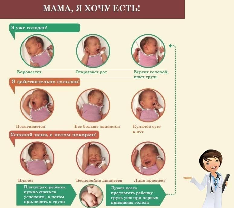 Пять сомнений кормящей мамы и простые пути их решения