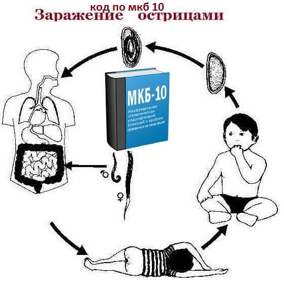 Что такое энтеробиоз, симптомы и причины заболевания у детей