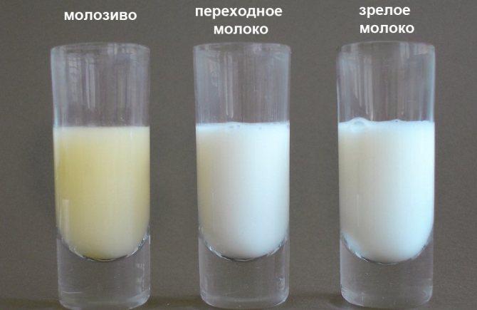 Грудное молоко стало горьким почему
