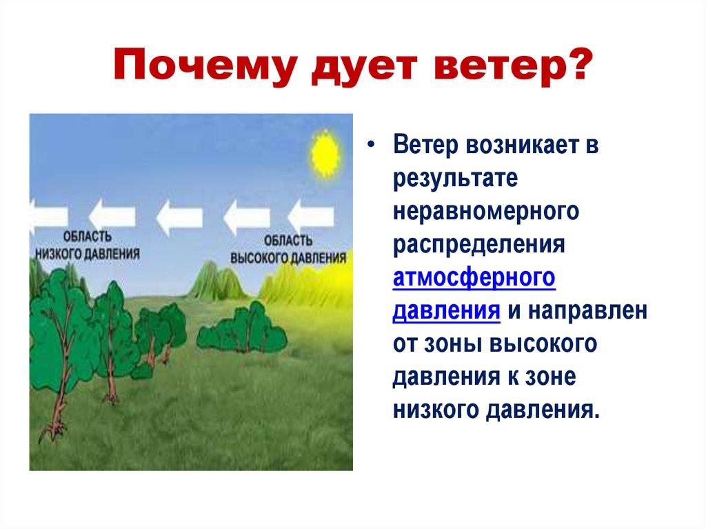 Конспект нод по экспериментированию в старшей группе «почему дует ветер?». воспитателям детских садов, школьным учителям и педагогам - маам.ру