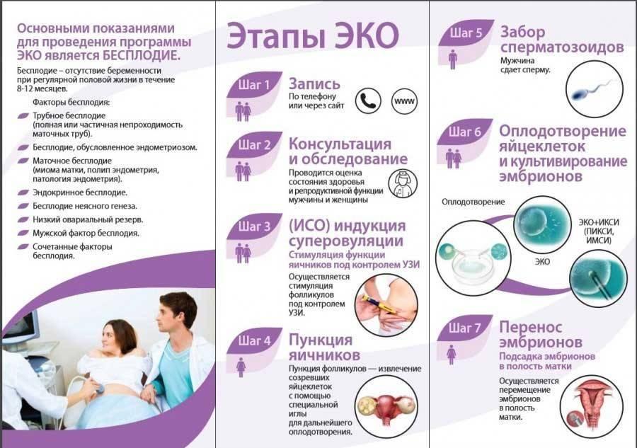 Когда показано эко с донорскими эмбрионами, как проходит процедура