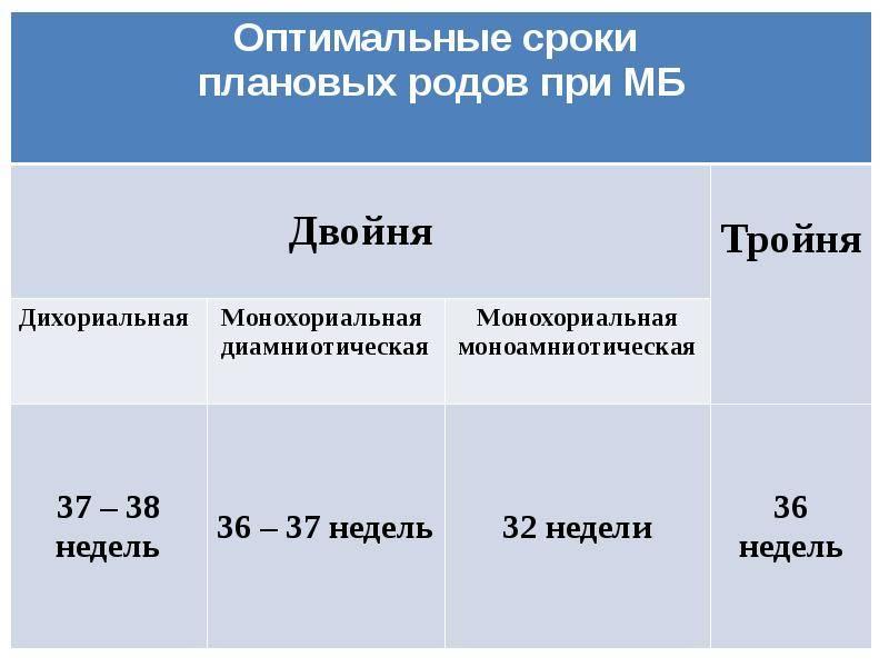 Двойня от эко: вероятность беременности двойней после эко, многоплодная беременность и особенности вынашивания близнецов