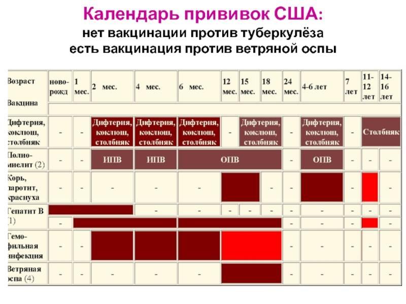 Прививка от оспы — когда делают вакцинацию и была ли она отменена в россии? - wikidochelp.ru