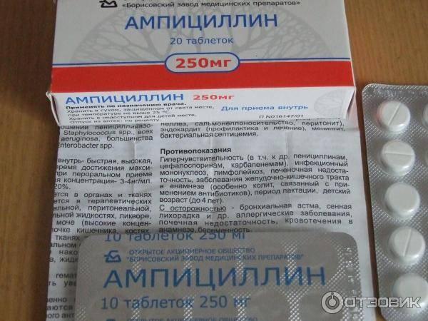 Ампициллин (порошок для приготовления раствора для инъекции): инструкция по применению