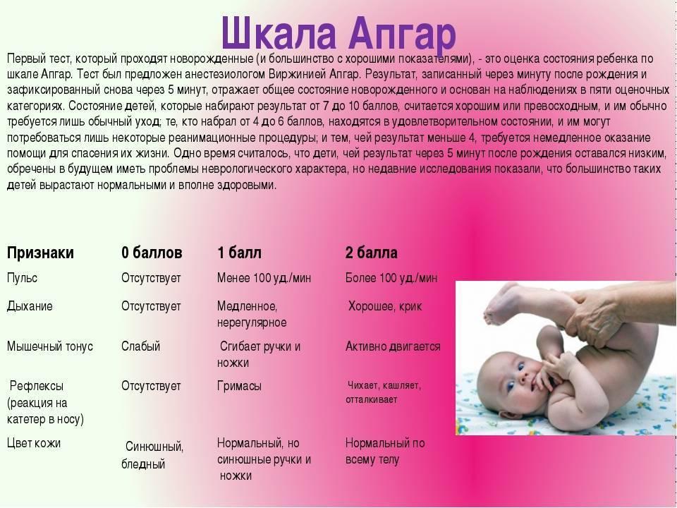 Поведение грудничков, развитие, что должен уметь ребенок по месяцам