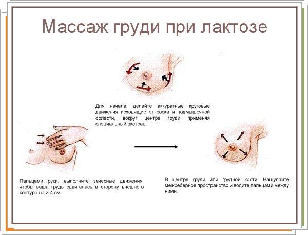 Как разминать грудь для кормления, при лактостазе и перед сцеживанием?