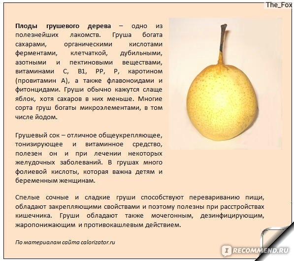 Польза грушевого пюре для грудничка, рецепты приготовления, со скольки месяцев можно давать