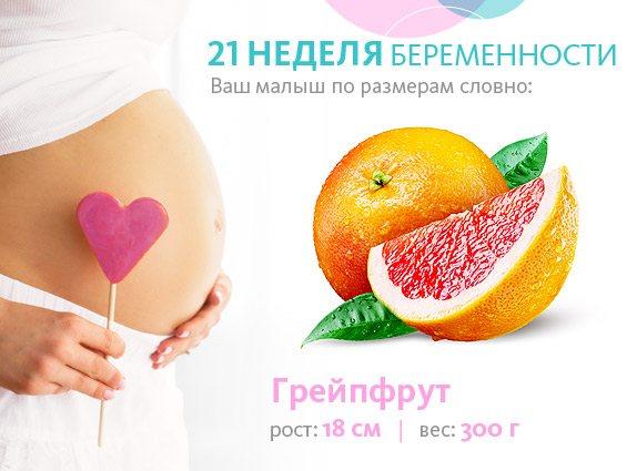 21 неделя беременности :: polismed.com