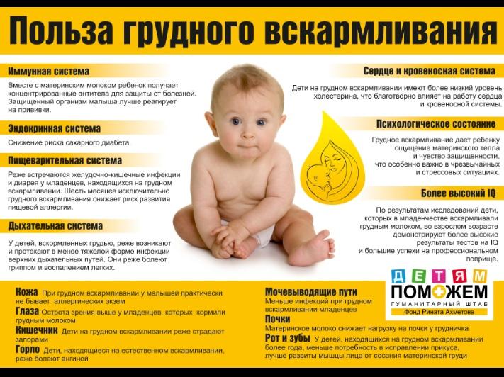 Польза и вред укропной воды для кормящей мамы. как и в каких случаях стоит принимать продукт?