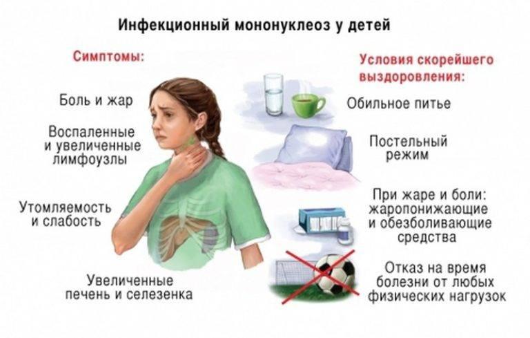 Питание при мононуклеозе у взрослых. диета при мононуклеозе – спасаем иммунитет | школа красоты