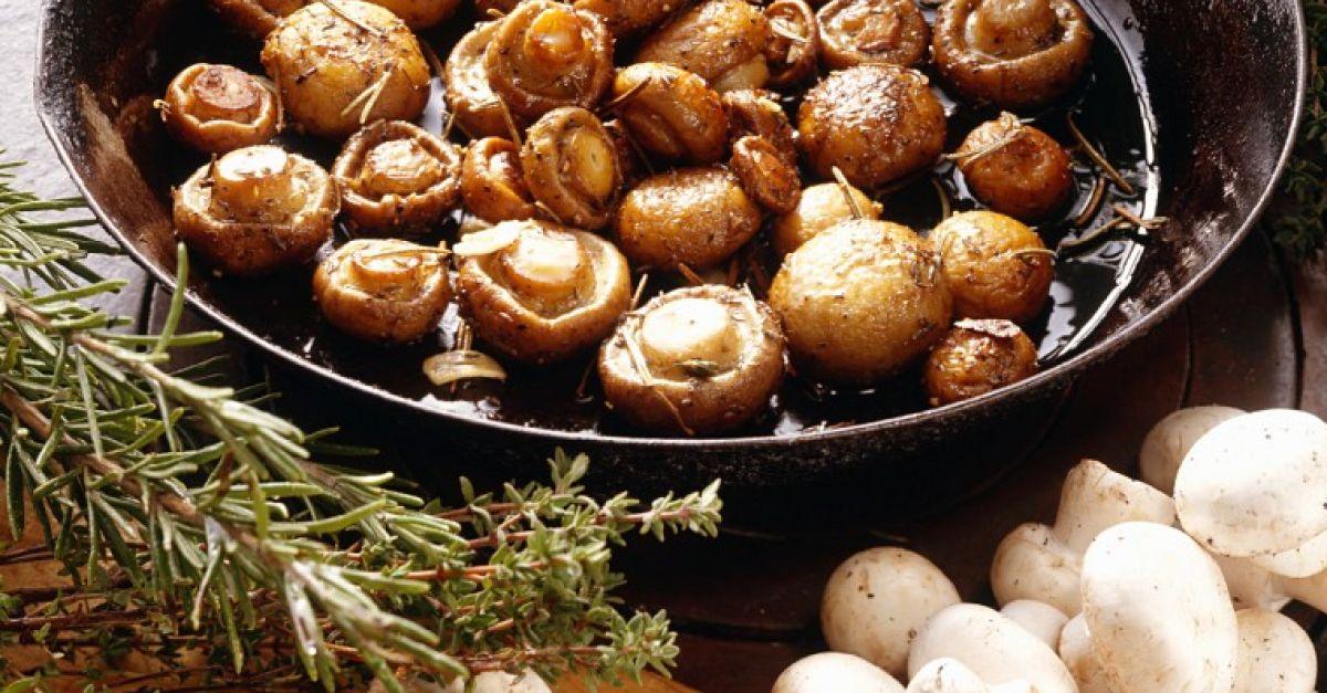 Можно ли есть грибы кормящей маме