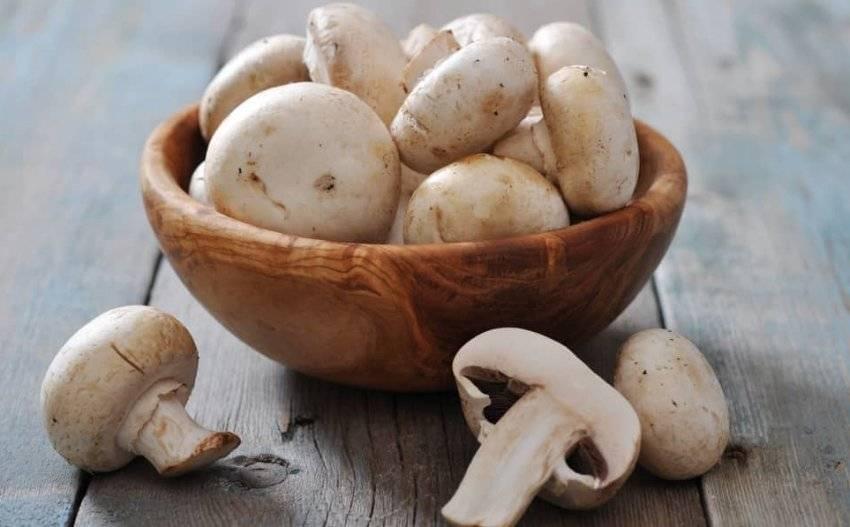 Можно ли детям употреблять грибы и с какого возраста
