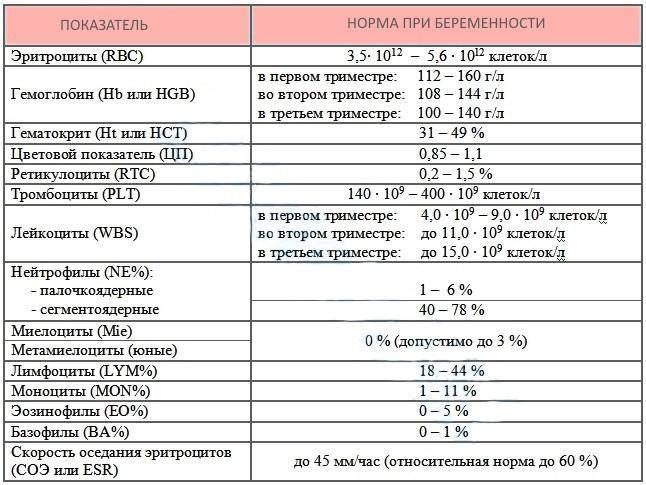 Гематокрит при беременности: норма, пониженное и повышенное значения