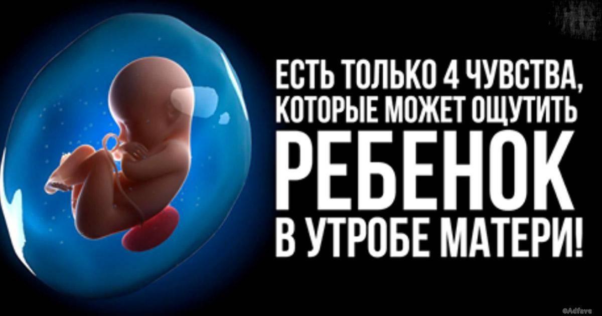Как можно убить ребенка в утробе. как избавиться от беременности? народные средства для прерывания беременности