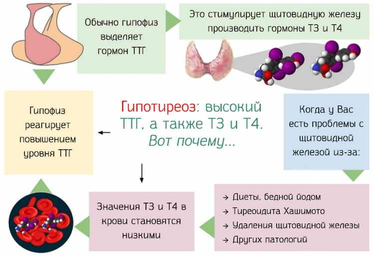 Тгт и пролактин: симптомы, причины, лечение