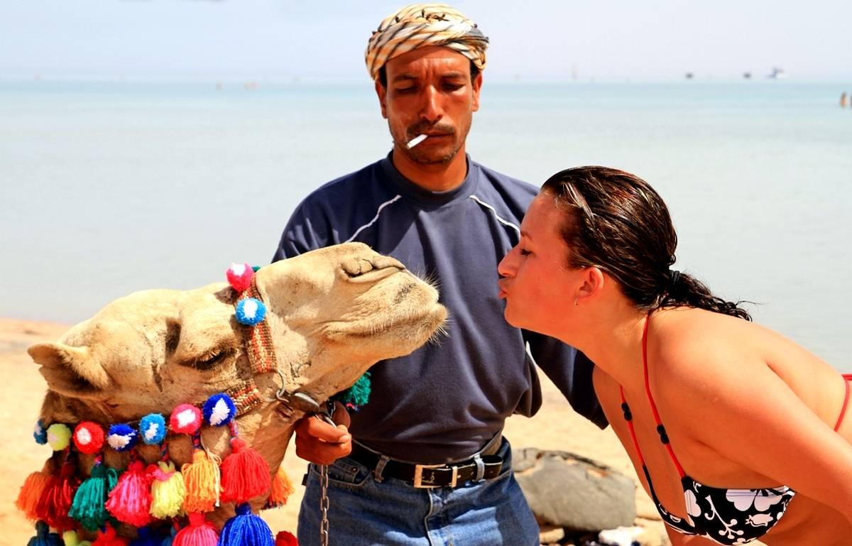 Как выбрать тур в Египет: советы опытного путешественника, три раза отдыхавшего в этой стране