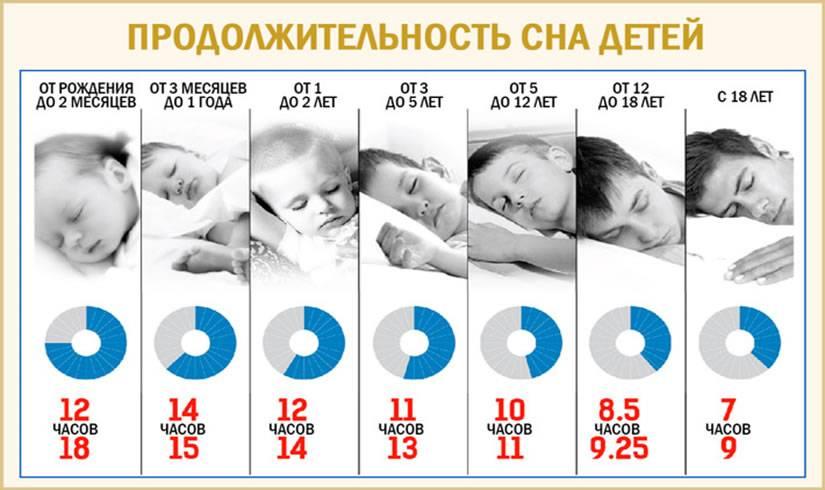 Сколько спит новорождённый ребёнок в сутки: физиологические потребности малыша во сне на первых этапах жизни