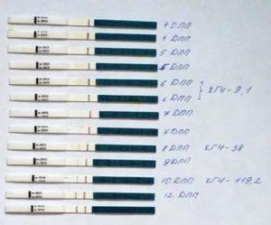 Криоперенос по омс: список анализов, квота и что входит