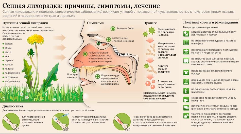 Мышиная лихорадка — симптомы у детей, лечение и профилактика заболевания
