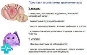 Заболевание трихомониаз при беременности: причины и признаки, лечение