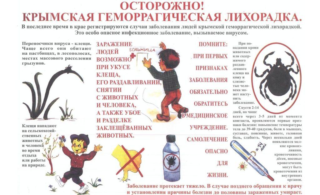 Геморрагическая лихорадка у детей