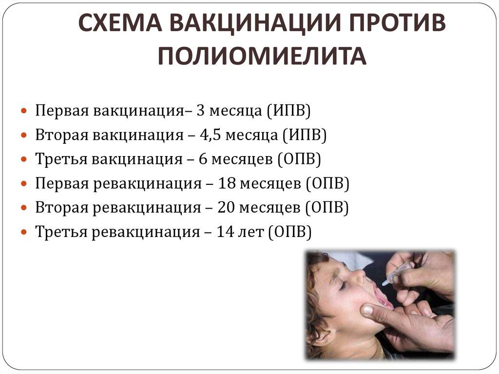 Можно ли заразиться полиомиелитом от привитого ребёнка