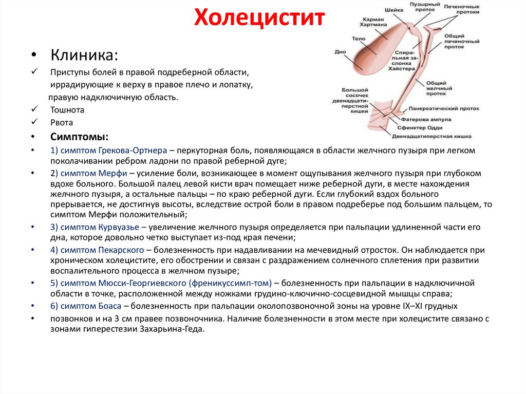 Лечение холецистита: схемы лечения