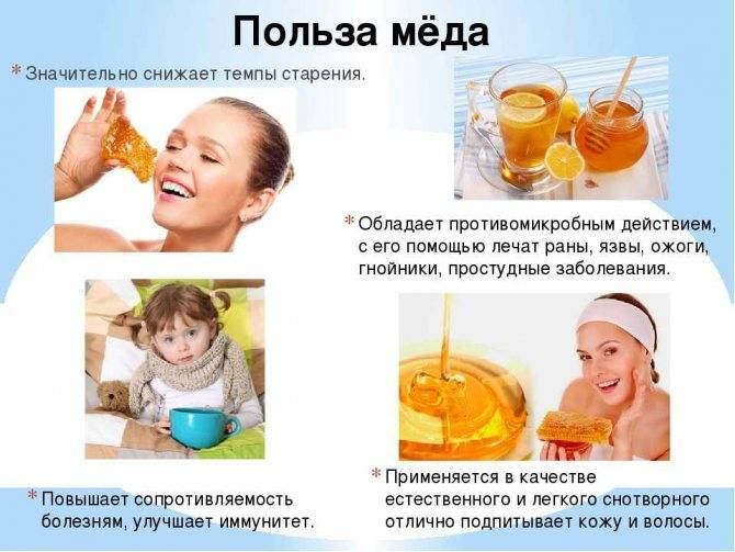 С какого возраста можно давать мед ребенку | пища это лекарство