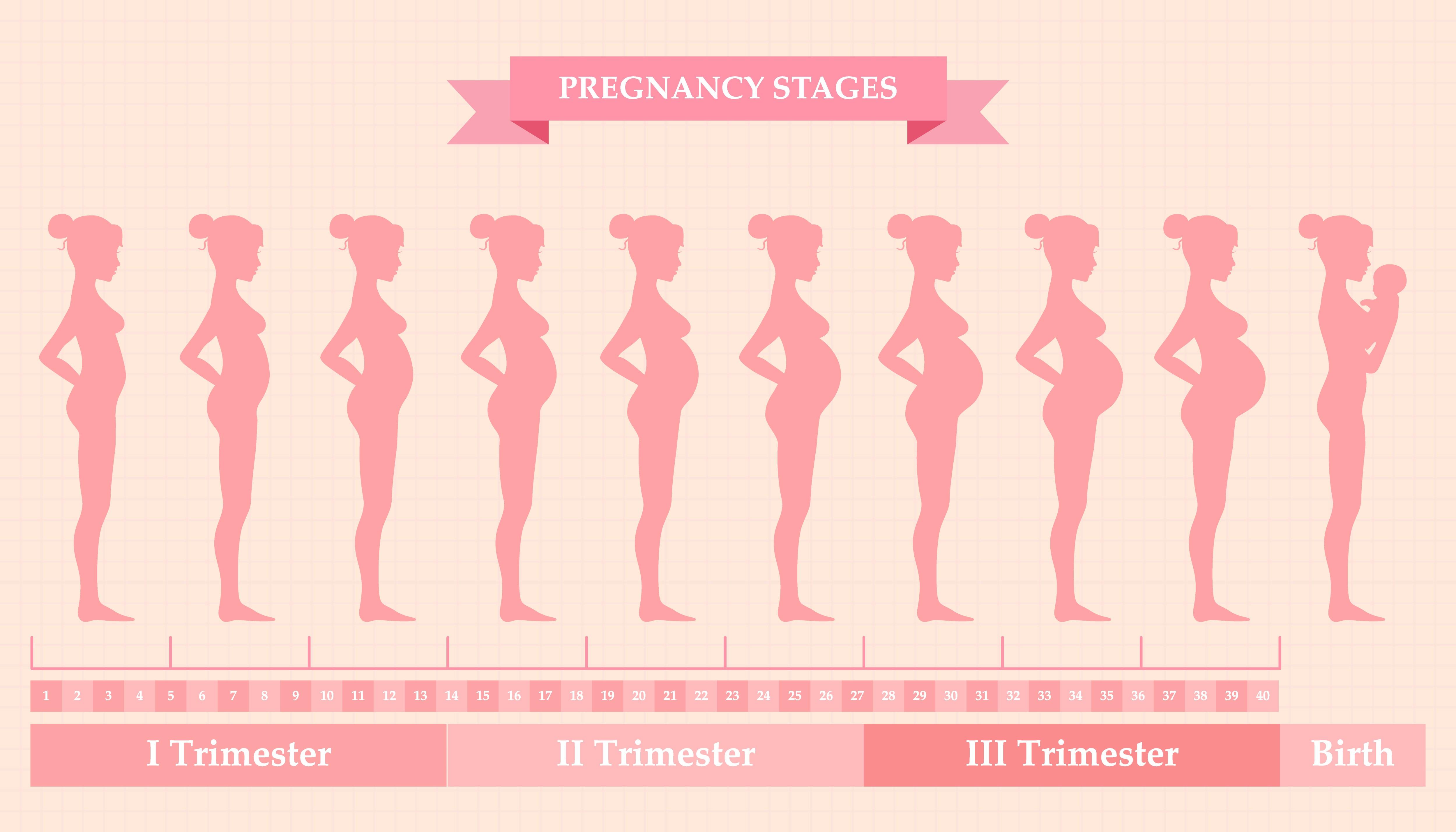 Рожать ли третьего ребенка: плюсы и минусы третьей беременности
