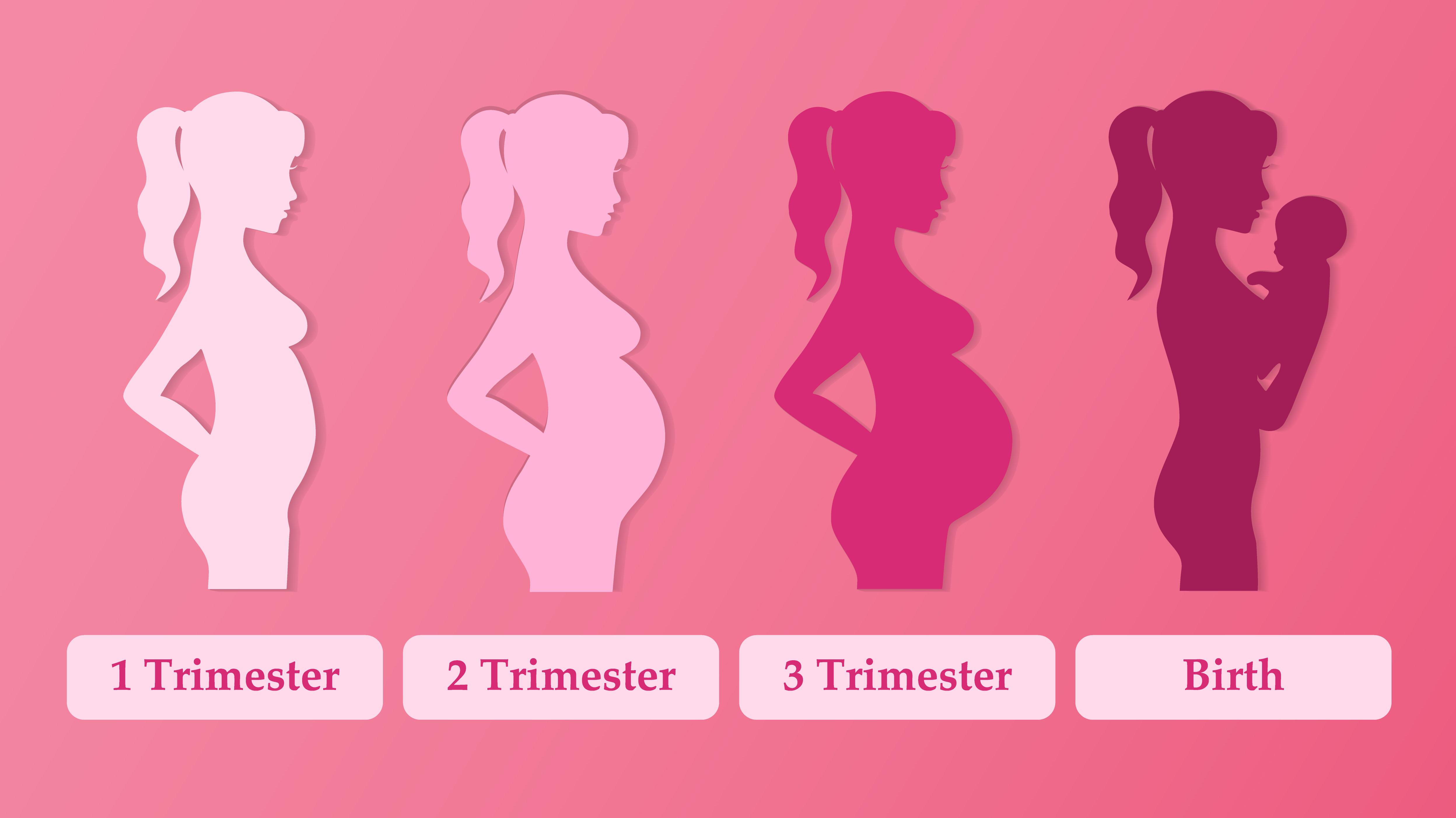 Вторая беременность – особенности и отличия от рождения первого ребенка
