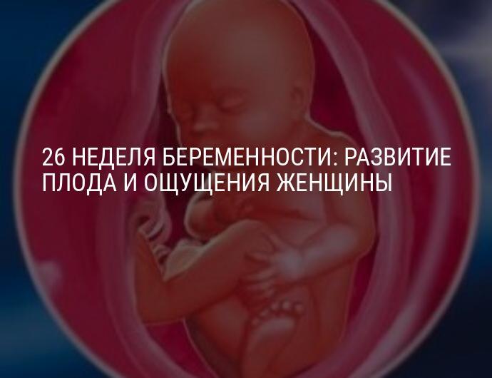 27 недель беременности что происходит с малышом и мамой фото ребенка, сколько это месяцев