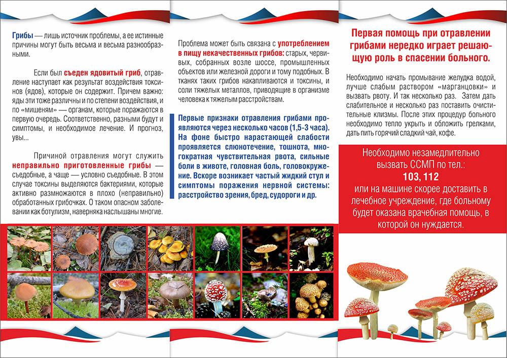 Отравления грибами: симптомы, признаки, через сколько проявляется, первая помощь