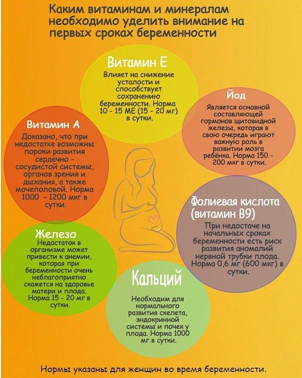 Что нужно знать о беременности на ранних сроках: симптомы, тесты