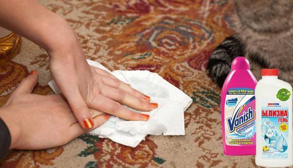 Чем убрать запах кошачьей мочи с ковра и паласа: как вывести народными способами