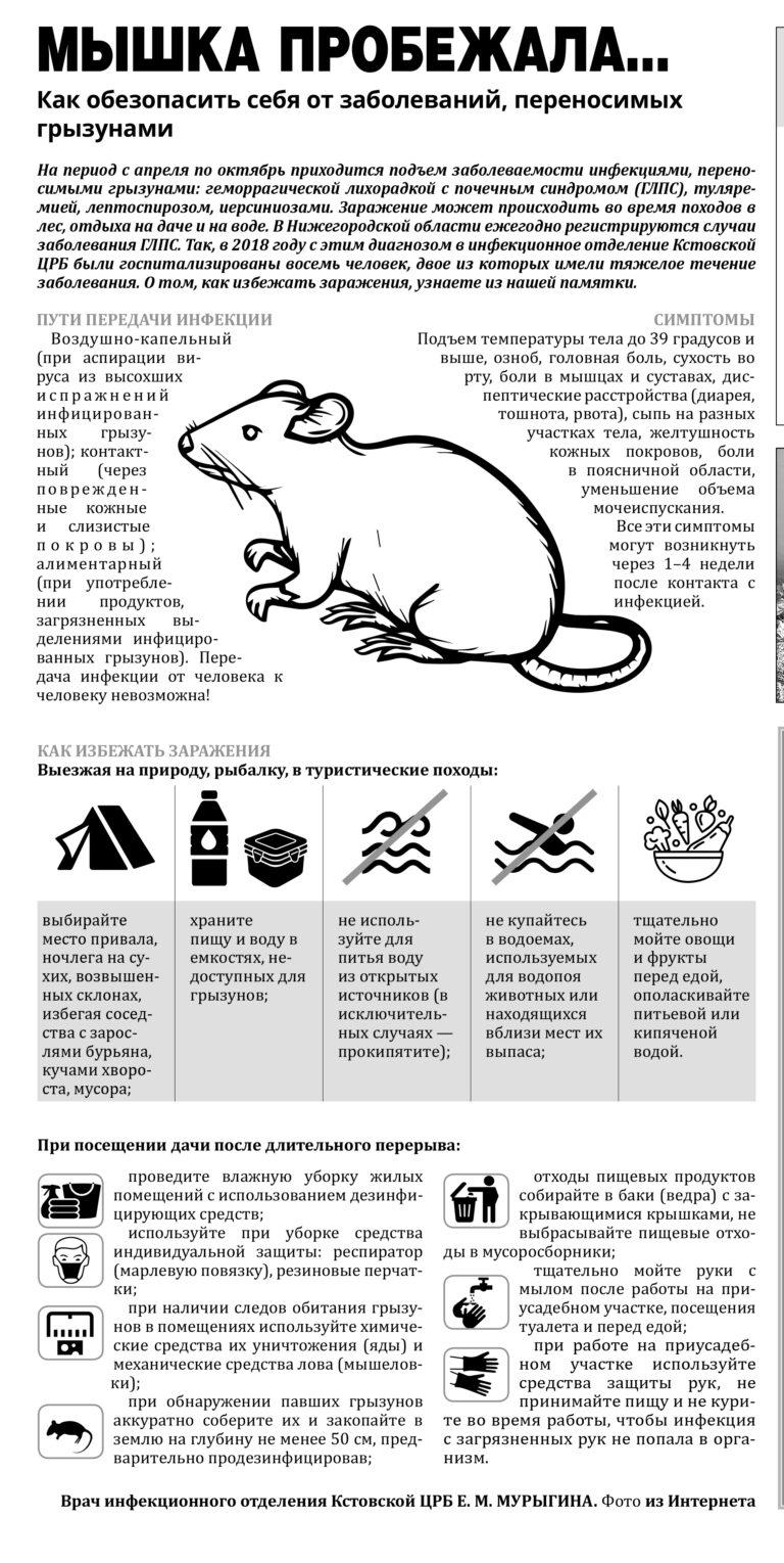Первые симптомы мышиной лихорадки у детей
