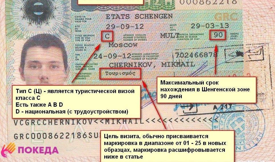 Шенгенская виза для ребенка: как сделать и сколько стоит