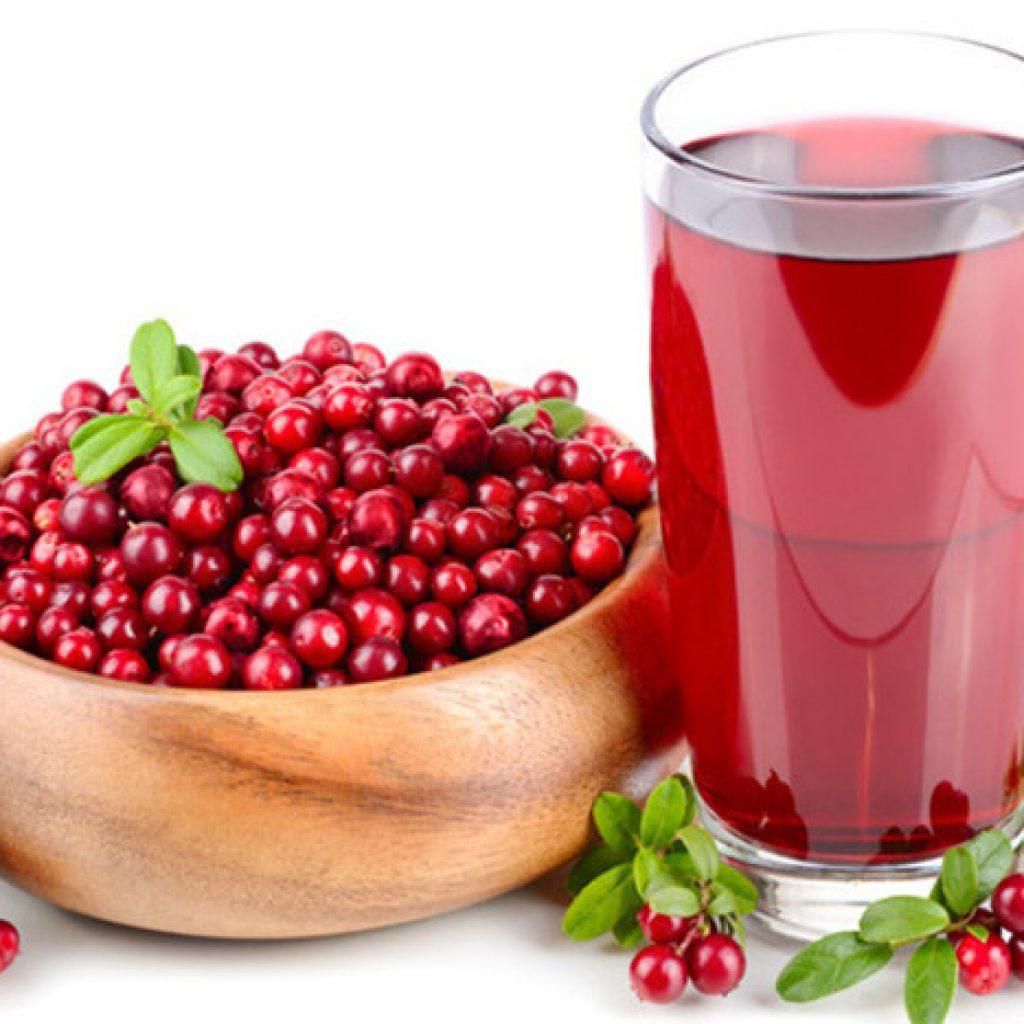 Клюквенный морс: рецепт из свежих и замороженных ягод, польза при простуде, беременности и лактации