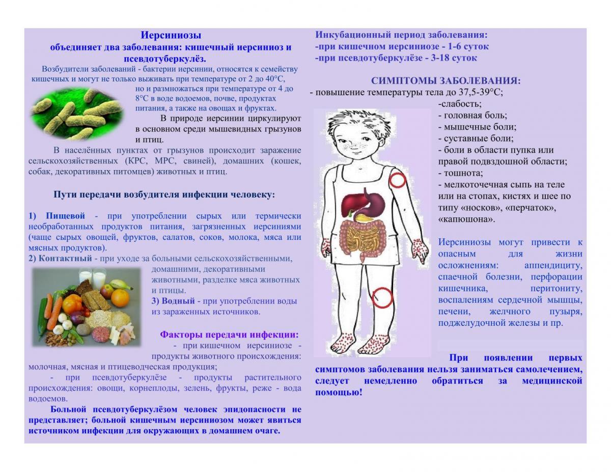 Иерсиниоз у детей - симптомы, лечение, фото, сыпь