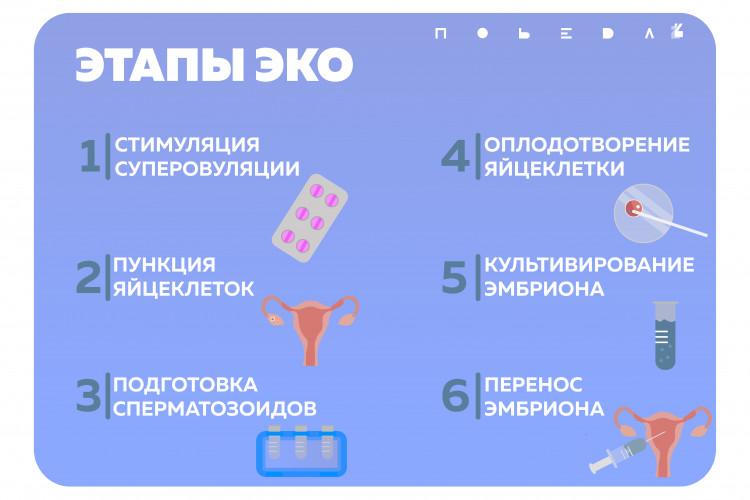 Эко с донорским эмбрионом: как проходит процедура, какова ее результативность