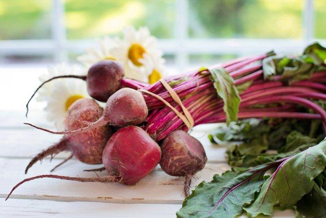 """С какого возраста детям дают свеклу: можно ли вводить в прикорм до года, со скольки месяцев """"разрешать знакомство"""" грудничку с овощем, разница в кормлении сырым, вареным корнеплодом и его соком"""