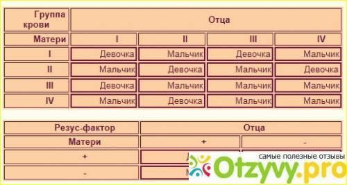 Группы крови - таблица совместимости для зачатия ребенка
