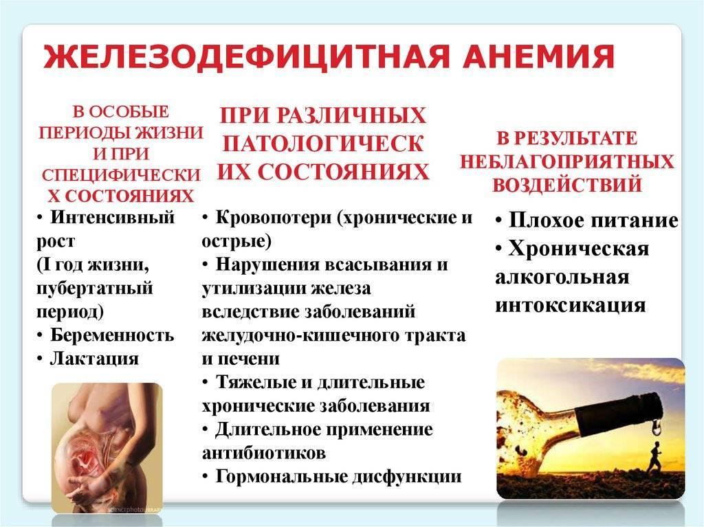 Железодефицитная анемия у ребенка - симптомы болезни, профилактика и лечение железодефицитной анемии у ребенка, причины заболевания и его диагностика на eurolab