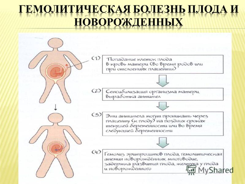 Гемолитическая болезнь плода и новорожденного: этиология, патогенез и лечение